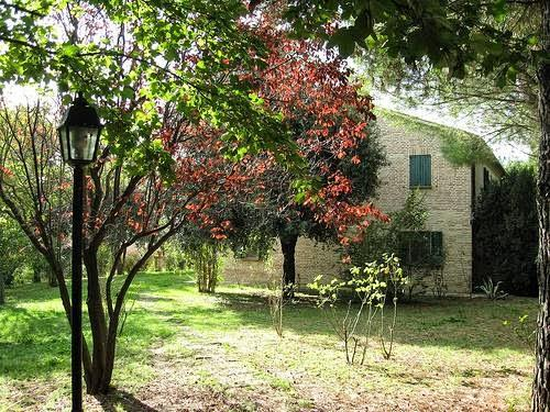 Bed And Breakfast I Tre Pulcini - Marches - Ancona